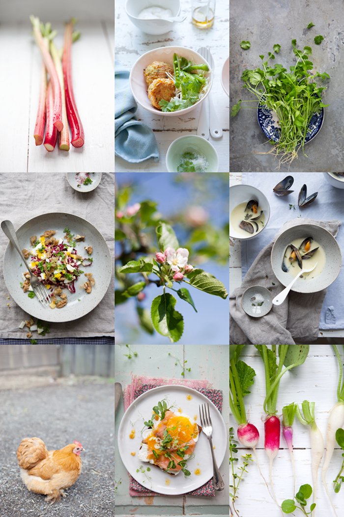 A foraging, food styling and food photography workshop :: Sonja Dahlgren/Dagmar's Kitchen