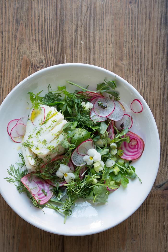 A fresh spring salad with poached cod :: Sonja Dahlgren/Dagmar's Kitchen