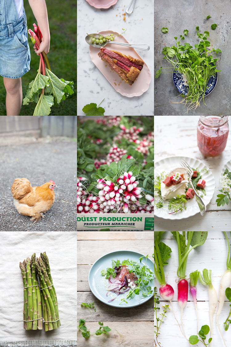 A Spring food photography & food styling workshop :: Sonja Dahlgren/Dagmar's Kitchen