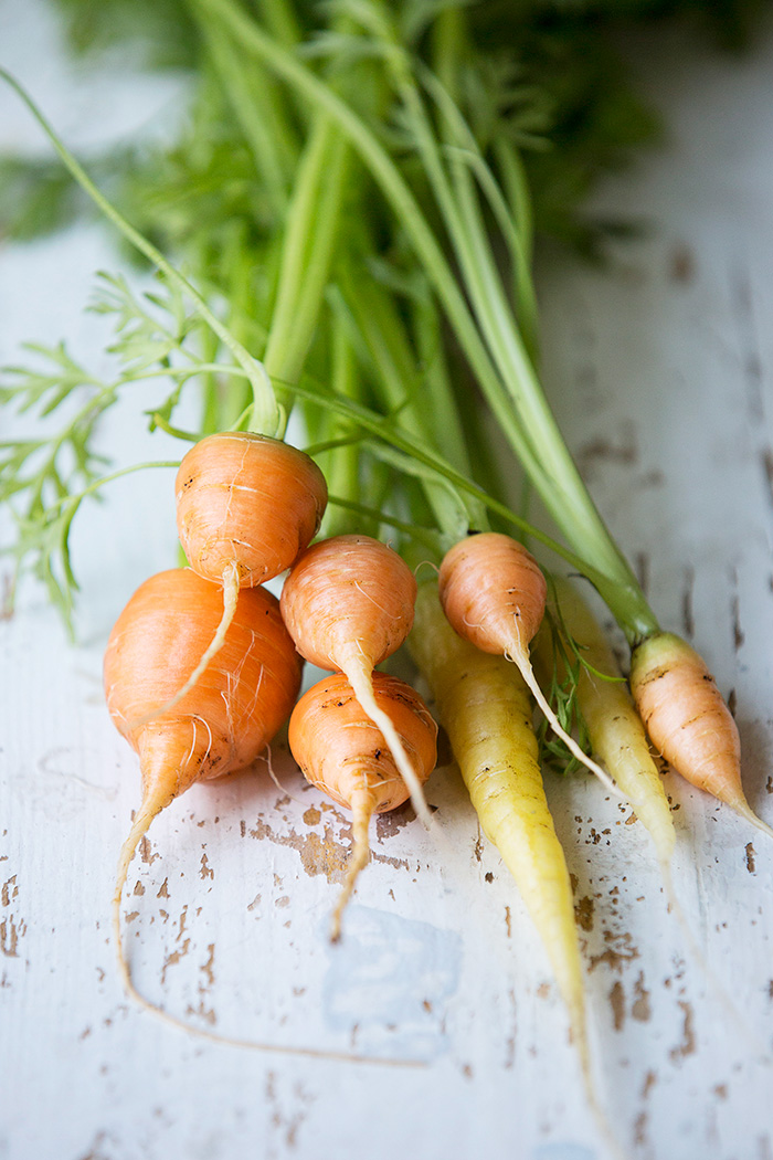 Young carrots with dill yoghurt and toasted cumin :: Sonja Dahlgren/Dagmar's Kitchen